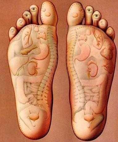 Lòng bàn chân như trung tâm thứ 2 của cơ thể sau trai tim.